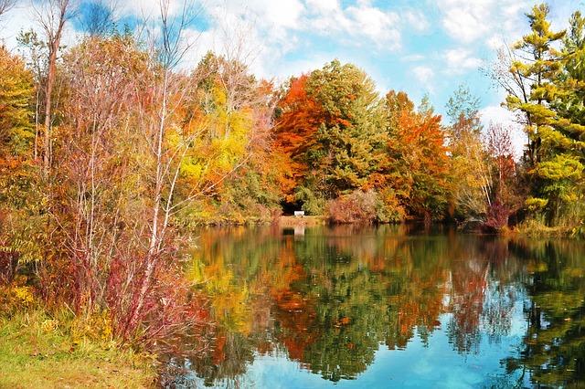 autumn-986327_640