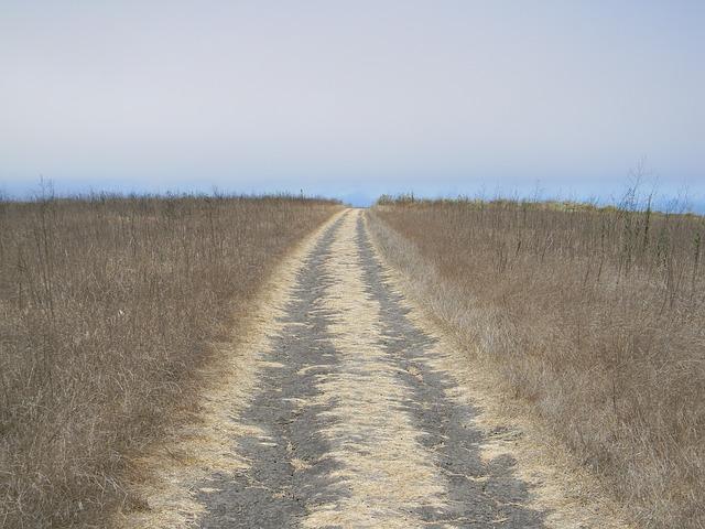 long-road-969019_640