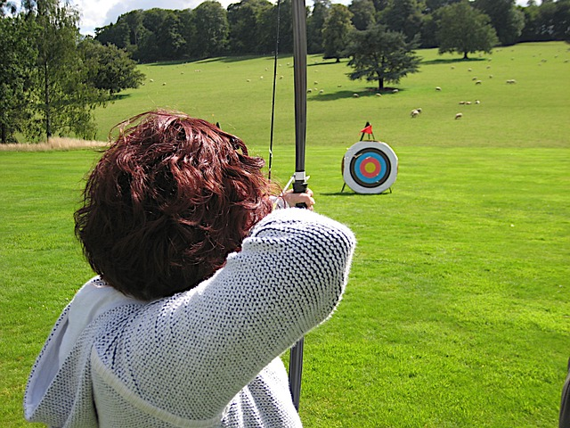 bows-and-arrows-650474_640