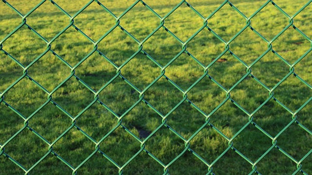fence-229434_640