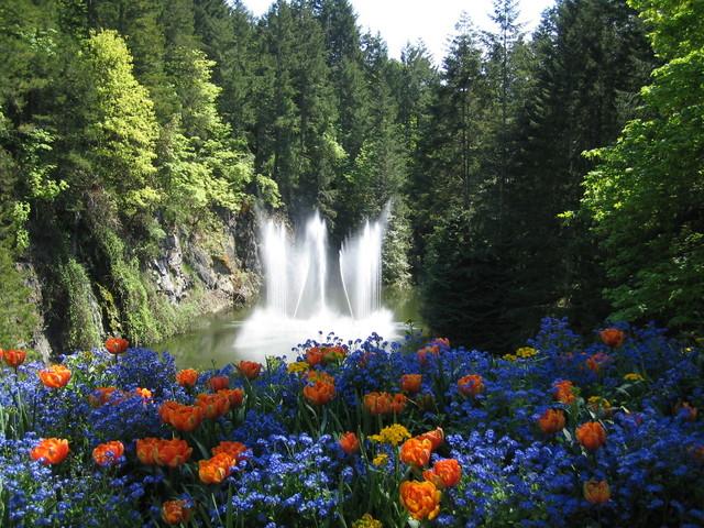 victoria-butchart-gardens-1386669-640x480